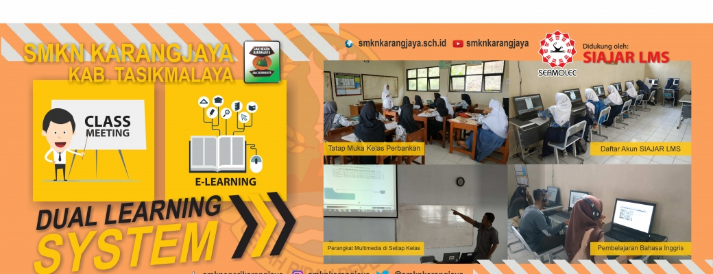 Dual Learning System